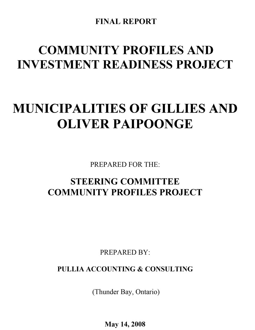 2008 Community Profiles and Investment Readiness Project